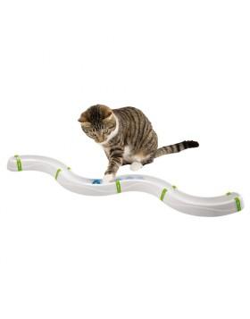 Toboga gioco per gatti