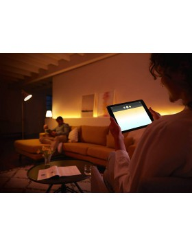 Lampadina Philips Attacco E27 Luce Bianca e Colorata Potenza 9,5W Illuminazione