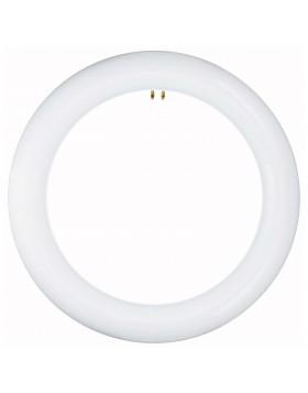 Lampada Neon Circolare a LED 15 W Luce Naturale Circolina LIFE