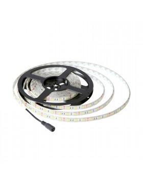 Bobina Striscia 300 Led Casa 5050 SMD Impermeabile Luce Naturale LIFE 16.LSB56050N